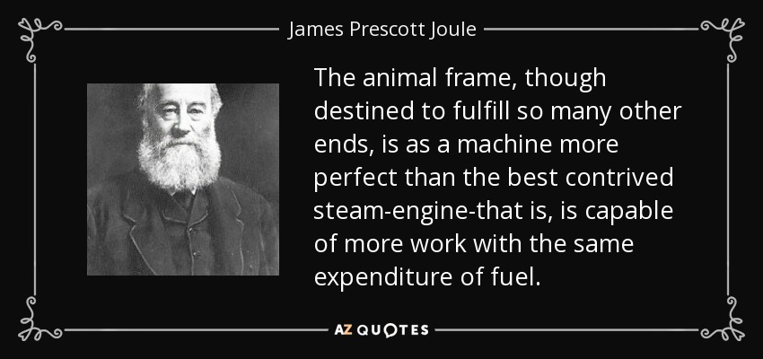 The animal frame, though destined to fulfill so many other ends, is as a machine more perfect than the best contrived steam-engine-that is, is capable of more work with the same expenditure of fuel. - James Prescott Joule