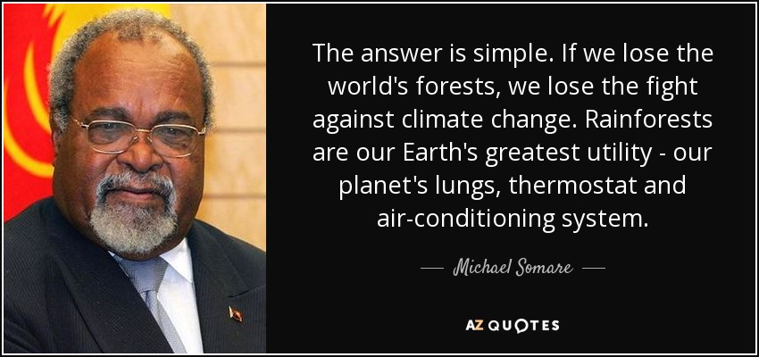 The answer is simple. If we lose the world's forests, we lose the fight against climate change. Rainforests are our Earth's greatest utility - our planet's lungs, thermostat and air-conditioning system. - Michael Somare