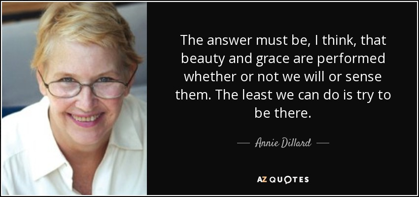 The answer must be, I think, that beauty and grace are performed whether or not we will or sense them. The least we can do is try to be there. - Annie Dillard