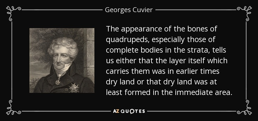The appearance of the bones of quadrupeds, especially those of complete bodies in the strata, tells us either that the layer itself which carries them was in earlier times dry land or that dry land was at least formed in the immediate area. - Georges Cuvier
