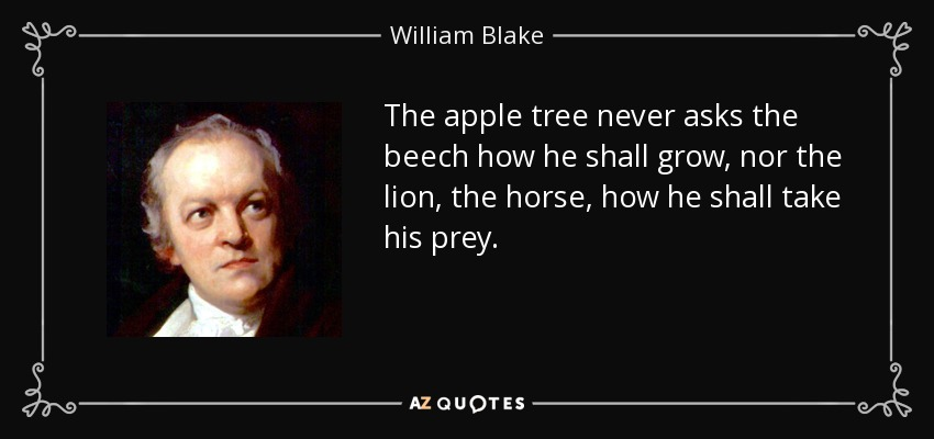 The apple tree never asks the beech how he shall grow, nor the lion, the horse, how he shall take his prey. - William Blake