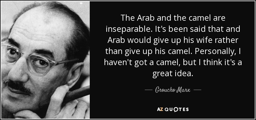 The Arab and the camel are inseparable. It's been said that and Arab would give up his wife rather than give up his camel. Personally, I haven't got a camel, but I think it's a great idea. - Groucho Marx
