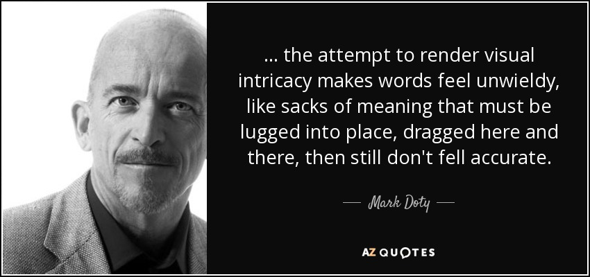 ... the attempt to render visual intricacy makes words feel unwieldy, like sacks of meaning that must be lugged into place, dragged here and there, then still don't fell accurate. - Mark Doty