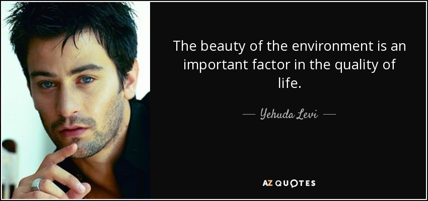 The beauty of the environment is an important factor in the quality of life. - Yehuda Levi