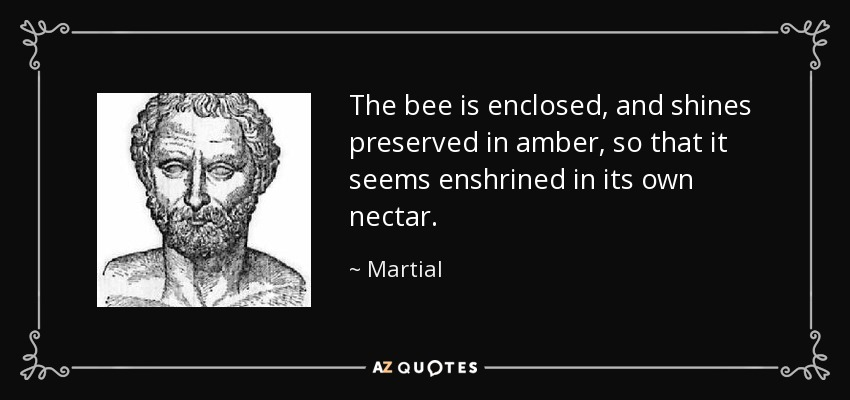 The bee is enclosed, and shines preserved in amber, so that it seems enshrined in its own nectar. - Martial