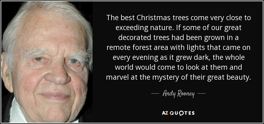 The best Christmas trees come very close to exceeding nature. If some of our great decorated trees had been grown in a remote forest area with lights that came on every evening as it grew dark, the whole world would come to look at them and marvel at the mystery of their great beauty. - Andy Rooney