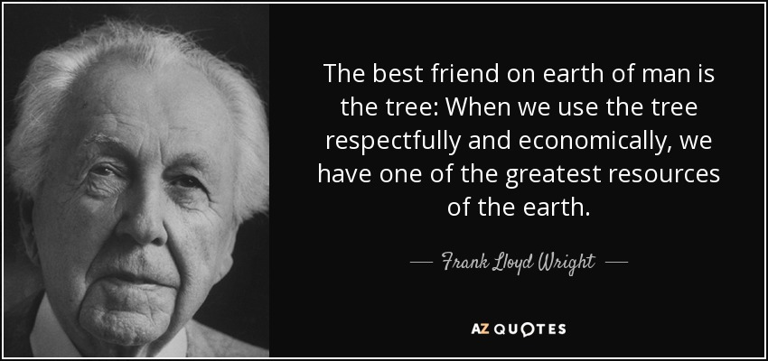 The best friend on earth of man is the tree: When we use the tree respectfully and economically, we have one of the greatest resources of the earth. - Frank Lloyd Wright