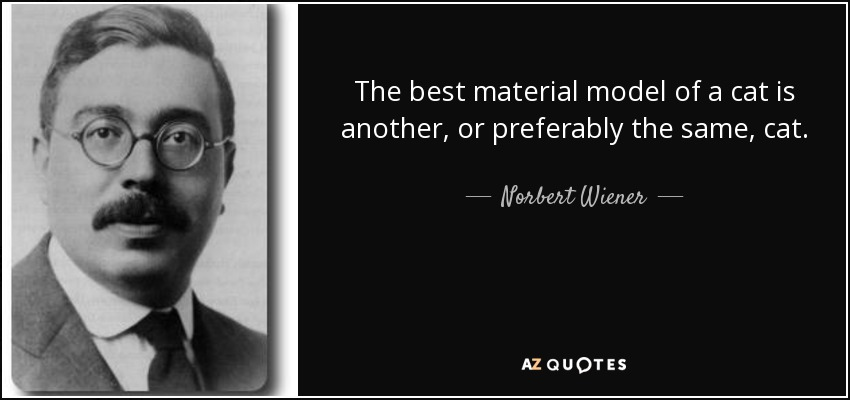 The best material model of a cat is another, or preferably the same, cat. - Norbert Wiener