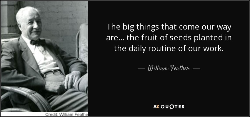 The big things that come our way are ... the fruit of seeds planted in the daily routine of our work. - William Feather