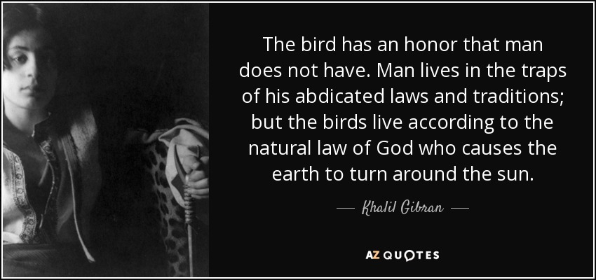 The bird has an honor that man does not have. Man lives in the traps of his abdicated laws and traditions; but the birds live according to the natural law of God who causes the earth to turn around the sun. - Khalil Gibran