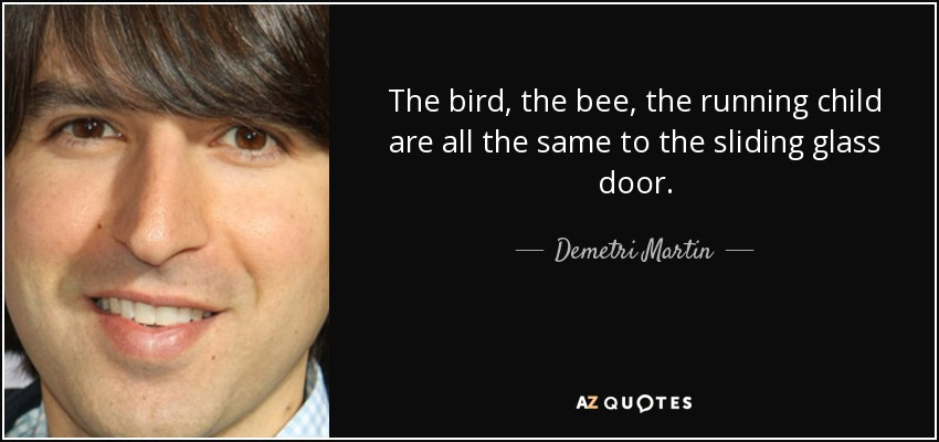 The bird, the bee, the running child are all the same to the sliding glass door. - Demetri Martin