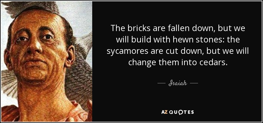 The bricks are fallen down, but we will build with hewn stones: the sycamores are cut down, but we will change them into cedars. - Isaiah