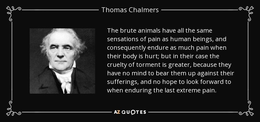 The brute animals have all the same sensations of pain as human beings, and consequently endure as much pain when their body is hurt; but in their case the cruelty of torment is greater, because they have no mind to bear them up against their sufferings, and no hope to look forward to when enduring the last extreme pain. - Thomas Chalmers