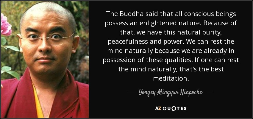 The Buddha said that all conscious beings possess an enlightened nature. Because of that, we have this natural purity, peacefulness and power. We can rest the mind naturally because we are already in possession of these qualities. If one can rest the mind naturally, that's the best meditation. - Yongey Mingyur Rinpoche