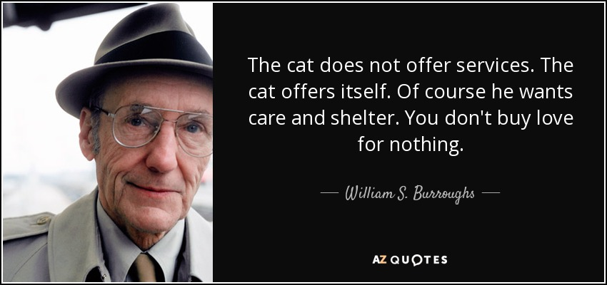 The cat does not offer services. The cat offers itself. Of course he wants care and shelter. You don't buy love for nothing. - William S. Burroughs
