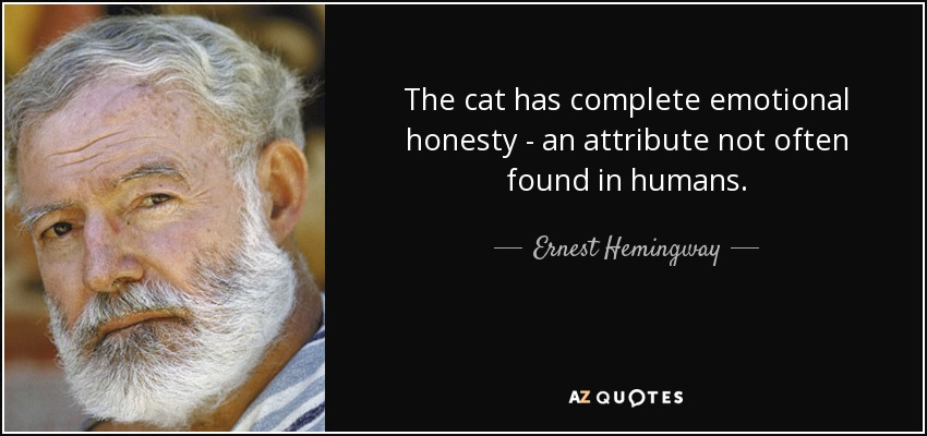 The cat has complete emotional honesty - an attribute not often found in humans. - Ernest Hemingway