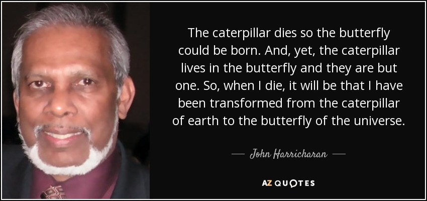 The caterpillar dies so the butterfly could be born. And, yet, the caterpillar lives in the butterfly and they are but one. So, when I die, it will be that I have been transformed from the caterpillar of earth to the butterfly of the universe. - John Harricharan