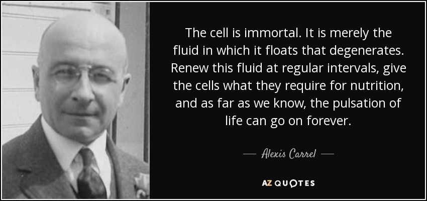 The cell is immortal. It is merely the fluid in which it floats that degenerates. Renew this fluid at regular intervals, give the cells what they require for nutrition, and as far as we know, the pulsation of life can go on forever. - Alexis Carrel