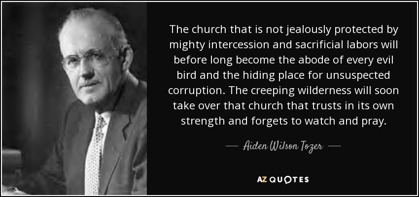The church that is not jealously protected by mighty intercession and sacrificial labors will before long become the abode of every evil bird and the hiding place for unsuspected corruption. The creeping wilderness will soon take over that church that trusts in its own strength and forgets to watch and pray. - Aiden Wilson Tozer