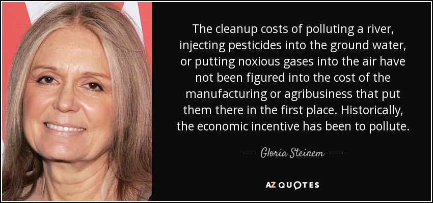The cleanup costs of polluting a river, injecting pesticides into the ground water, or putting noxious gases into the air have not been figured into the cost of the manufacturing or agribusiness that put them there in the first place. Historically, the economic incentive has been to pollute. - Gloria Steinem