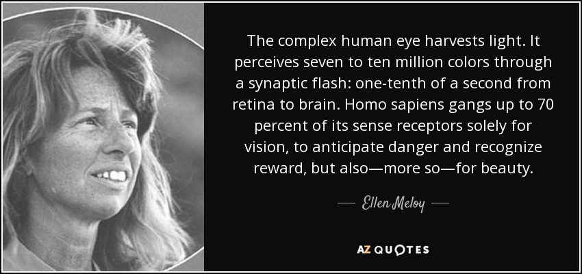 The complex human eye harvests light. It perceives seven to ten million colors through a synaptic flash: one-tenth of a second from retina to brain. Homo sapiens gangs up to 70 percent of its sense receptors solely for vision, to anticipate danger and recognize reward, but also—more so—for beauty. - Ellen Meloy