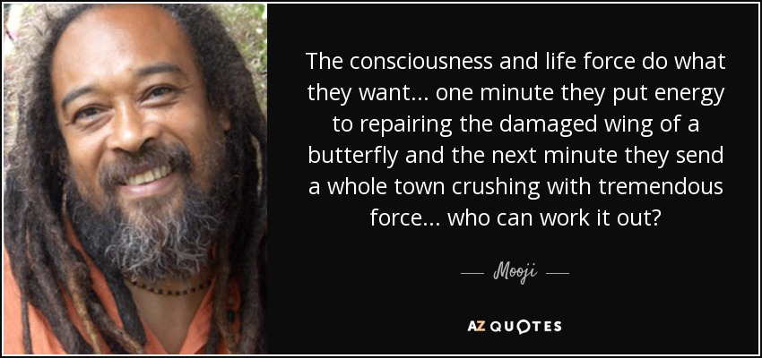 The consciousness and life force do what they want... one minute they put energy to repairing the damaged wing of a butterfly and the next minute they send a whole town crushing with tremendous force... who can work it out? - Mooji