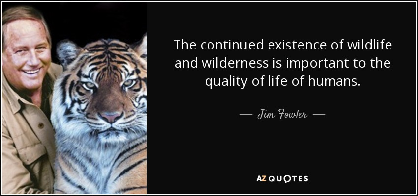The continued existence of wildlife and wilderness is important to the quality of life of humans. - Jim Fowler