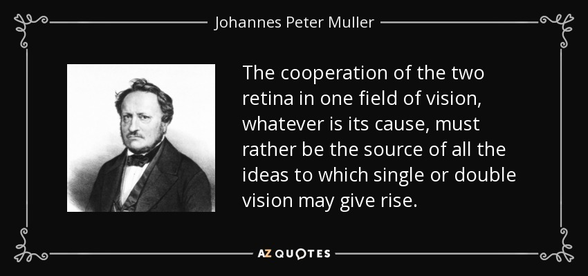 The cooperation of the two retina in one field of vision, whatever is its cause, must rather be the source of all the ideas to which single or double vision may give rise. - Johannes Peter Muller