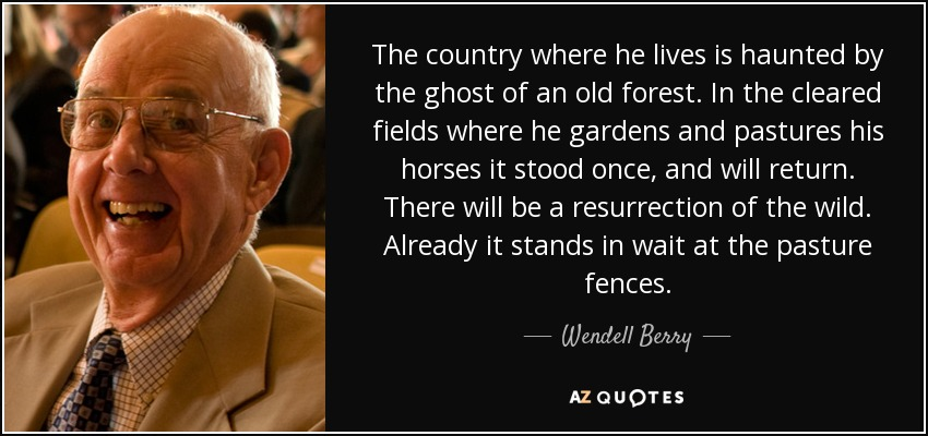 The country where he lives is haunted by the ghost of an old forest. In the cleared fields where he gardens and pastures his horses it stood once, and will return. There will be a resurrection of the wild. Already it stands in wait at the pasture fences. - Wendell Berry