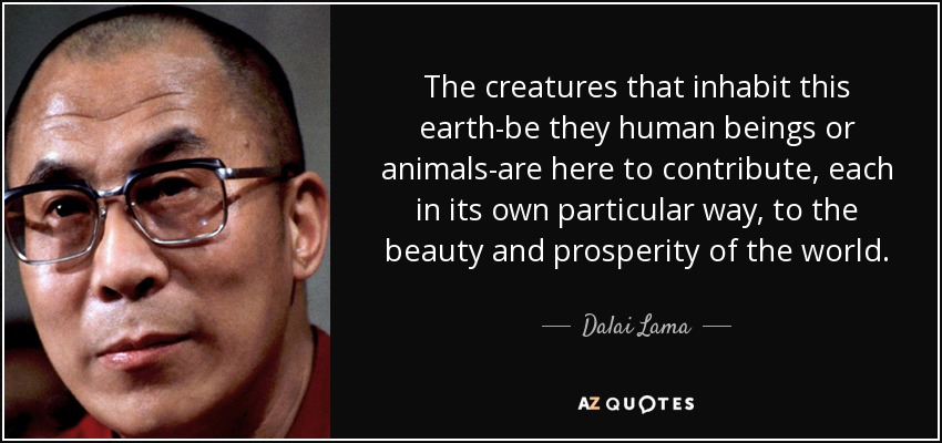 The creatures that inhabit this earth--be they human beings or animals--are here to contribute, each in its own particular way, to the beauty and prosperity of the world. - Dalai Lama