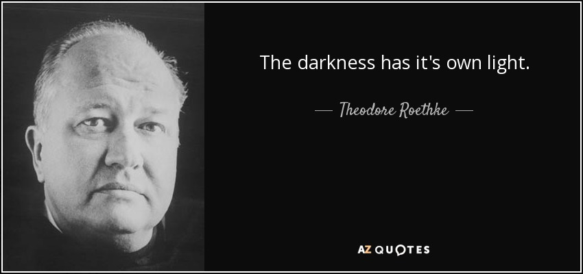 The darkness has it's own light. - Theodore Roethke