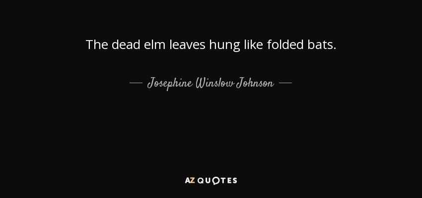 The dead elm leaves hung like folded bats. - Josephine Winslow Johnson