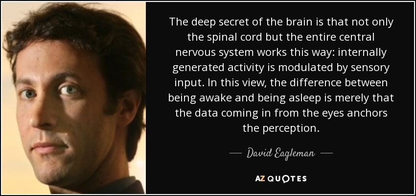 The deep secret of the brain is that not only the spinal cord but the entire central nervous system works this way: internally generated activity is modulated by sensory input. In this view, the difference between being awake and being asleep is merely that the data coming in from the eyes anchors the perception. - David Eagleman