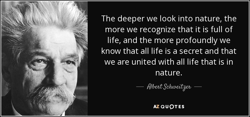 The deeper we look into nature, the more we recognize that it is full of life, and the more profoundly we know that all life is a secret and that we are united with all life that is in nature. - Albert Schweitzer
