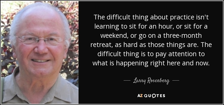 The difficult thing about practice isn't learning to sit for an hour, or sit for a weekend, or go on a three-month retreat, as hard as those things are. The difficult thing is to pay attention to what is happening right here and now. - Larry Rosenberg