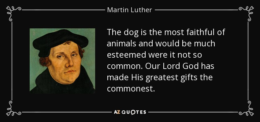 The dog is the most faithful of animals and would be much esteemed were it not so common. Our Lord God has made His greatest gifts the commonest. - Martin Luther
