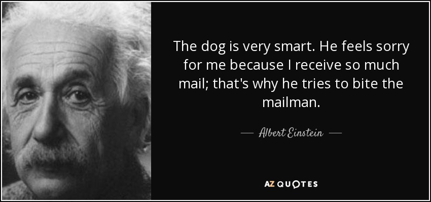 The dog is very smart. He feels sorry for me because I receive so much mail; that's why he tries to bite the mailman. - Albert Einstein