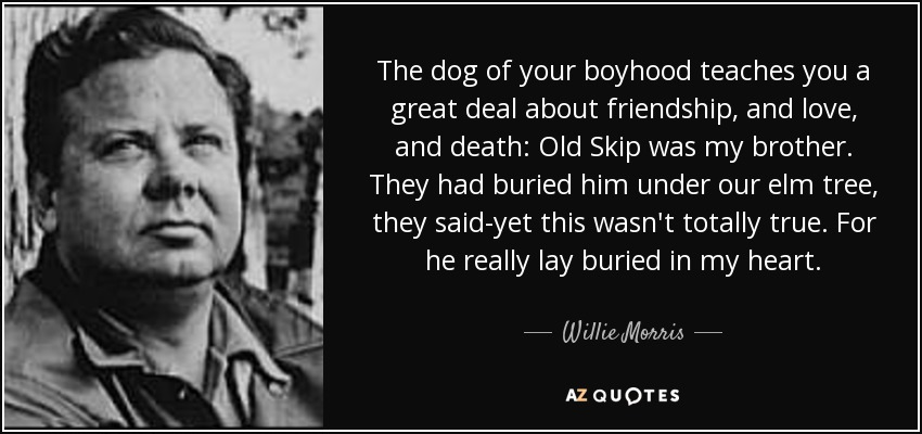 The dog of your boyhood teaches you a great deal about friendship, and love, and death: Old Skip was my brother. They had buried him under our elm tree, they said-yet this wasn't totally true. For he really lay buried in my heart. - Willie Morris