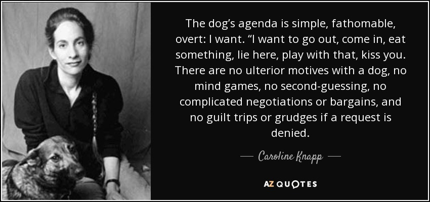 "The dog's agenda is simple, fathomable, overt: I want. ""I want to go out, come in, eat something, lie here, play with that, kiss you. There are no ulterior motives with a dog, no mind games, no second-guessing, no complicated negotiations or bargains, and no guilt trips or grudges if a request is denied. - Caroline Knapp"