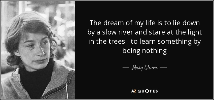The dream of my life is to lie down by a slow river and stare at the light in the trees - to learn something by being nothing - Mary Oliver