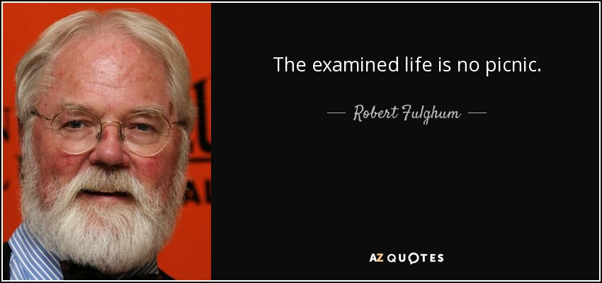The examined life is no picnic. - Robert Fulghum