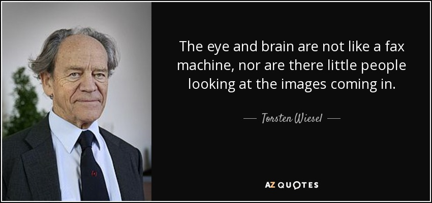 The eye and brain are not like a fax machine, nor are there little people looking at the images coming in. - Torsten Wiesel