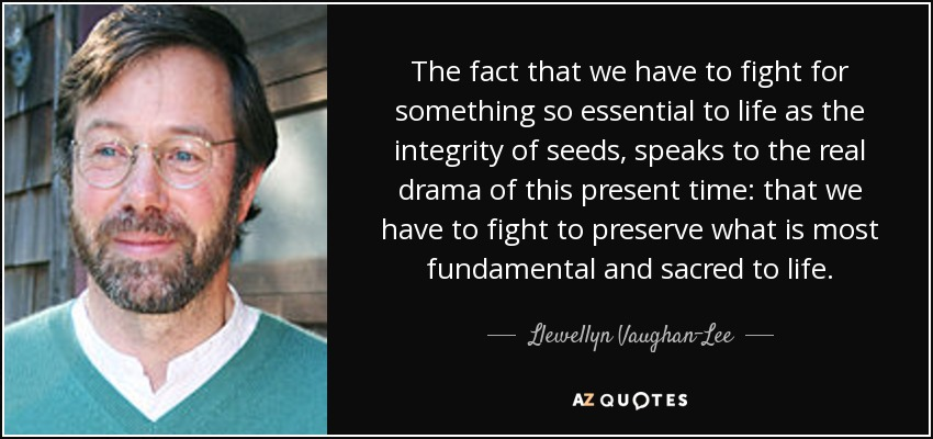 The fact that we have to fight for something so essential to life as the integrity of seeds, speaks to the real drama of this present time: that we have to fight to preserve what is most fundamental and sacred to life. - Llewellyn Vaughan-Lee