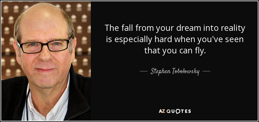 The fall from your dream into reality is especially hard when you've seen that you can fly. - Stephen Tobolowsky