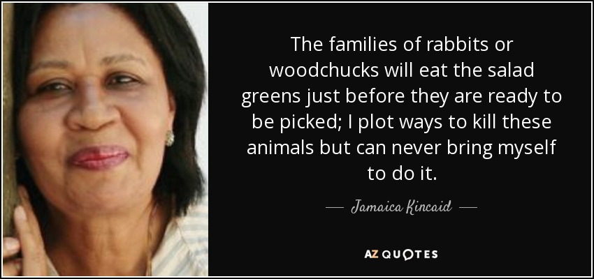 The families of rabbits or woodchucks will eat the salad greens just before they are ready to be picked; I plot ways to kill these animals but can never bring myself to do it. - Jamaica Kincaid