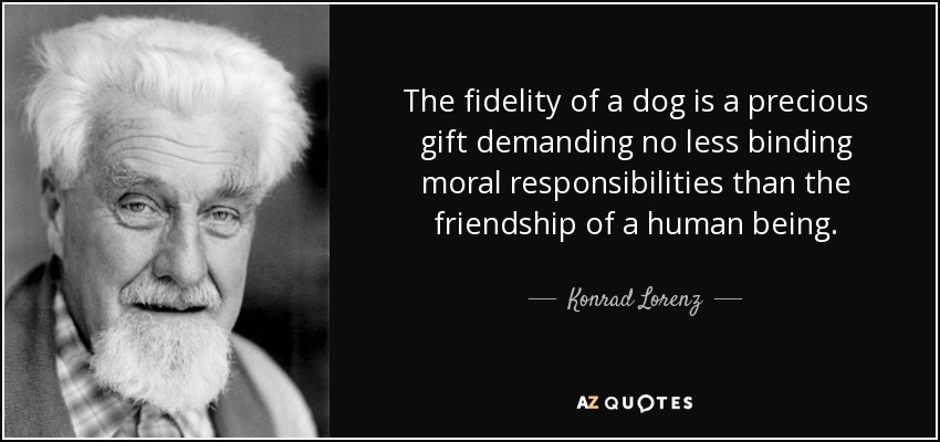 The fidelity of a dog is a precious gift demanding no less binding moral responsibilities than the friendship of a human being. - Konrad Lorenz