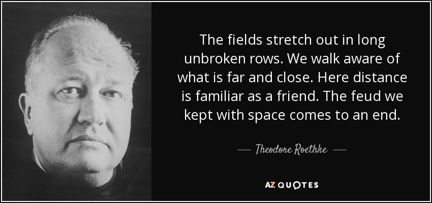 The fields stretch out in long unbroken rows. We walk aware of what is far and close. Here distance is familiar as a friend. The feud we kept with space comes to an end. - Theodore Roethke