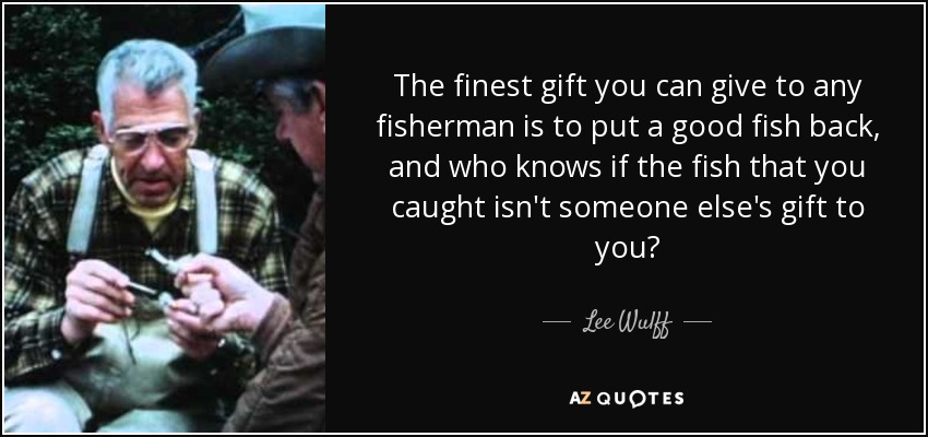 The finest gift you can give to any fisherman is to put a good fish back, and who knows if the fish that you caught isn't someone else's gift to you? - Lee Wulff