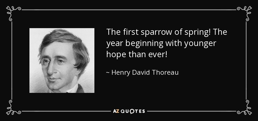 The first sparrow of spring! The year beginning with younger hope than ever! - Henry David Thoreau