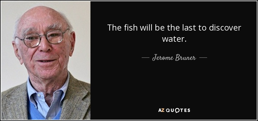 The fish will be the last to discover water. - Jerome Bruner